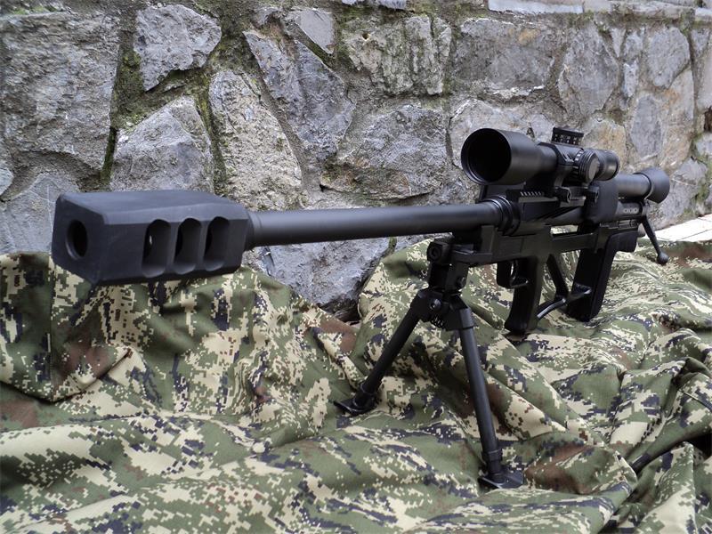 anti material gun